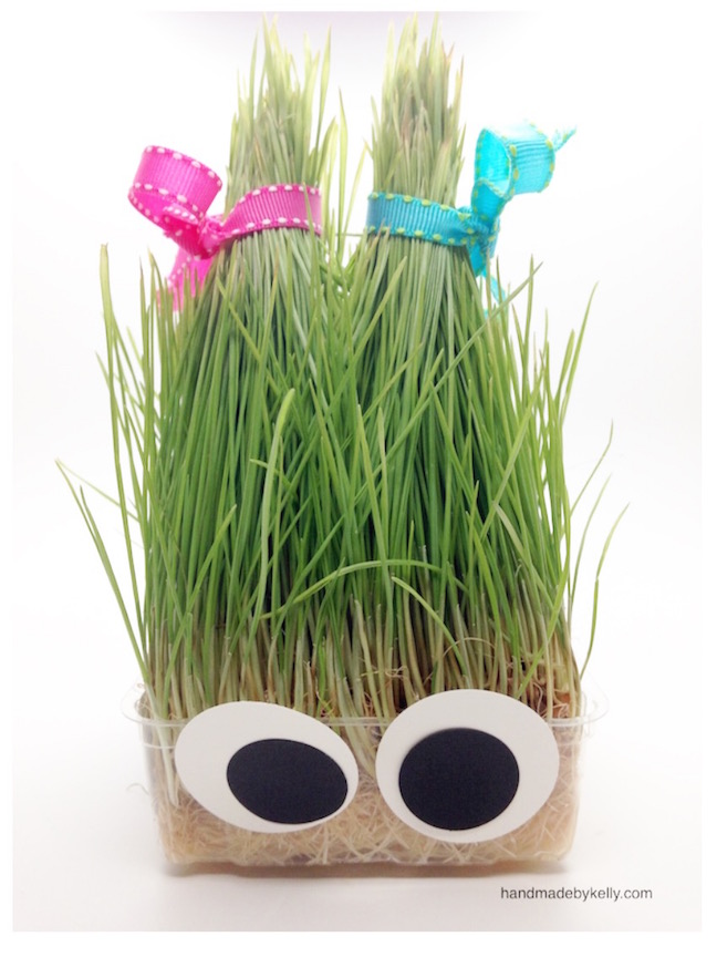5-minute DIY Silly Grass Head Craft; handmadebykelly.com