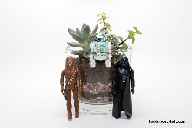 DIY Easy Succulent Terrarium (Star Wars Style) - handmadebykelly.com