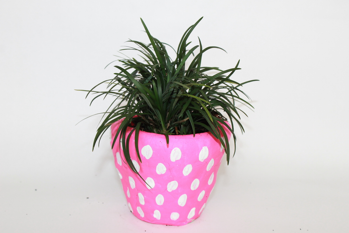 strawberry planters - handmadebykelly.com; momtastic.com