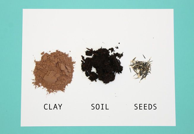 how to make seed bombs; handmadebykelly.com; mnn.com