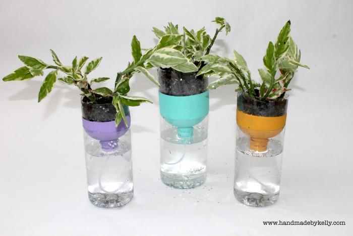 Recycled Self Watering Water Bottle Garden Craft